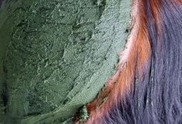 Как применять басму для окрашивания волос?