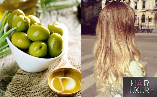 Оливковое масло для волос: применение